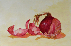 """Red Onion"" watercolor 8"" x 12"""